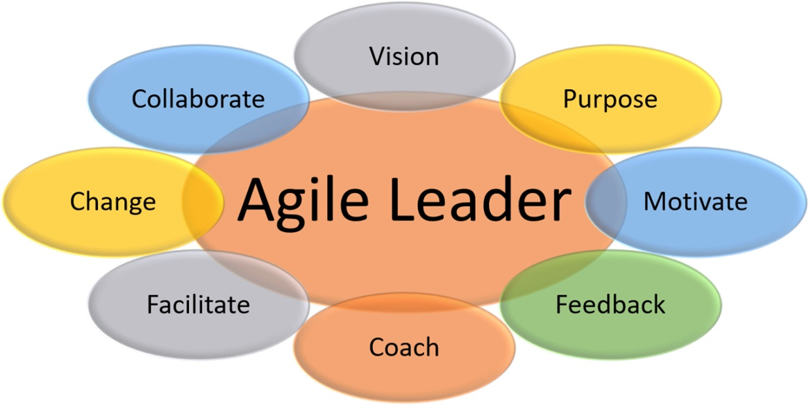 Agile Leader's Functions
